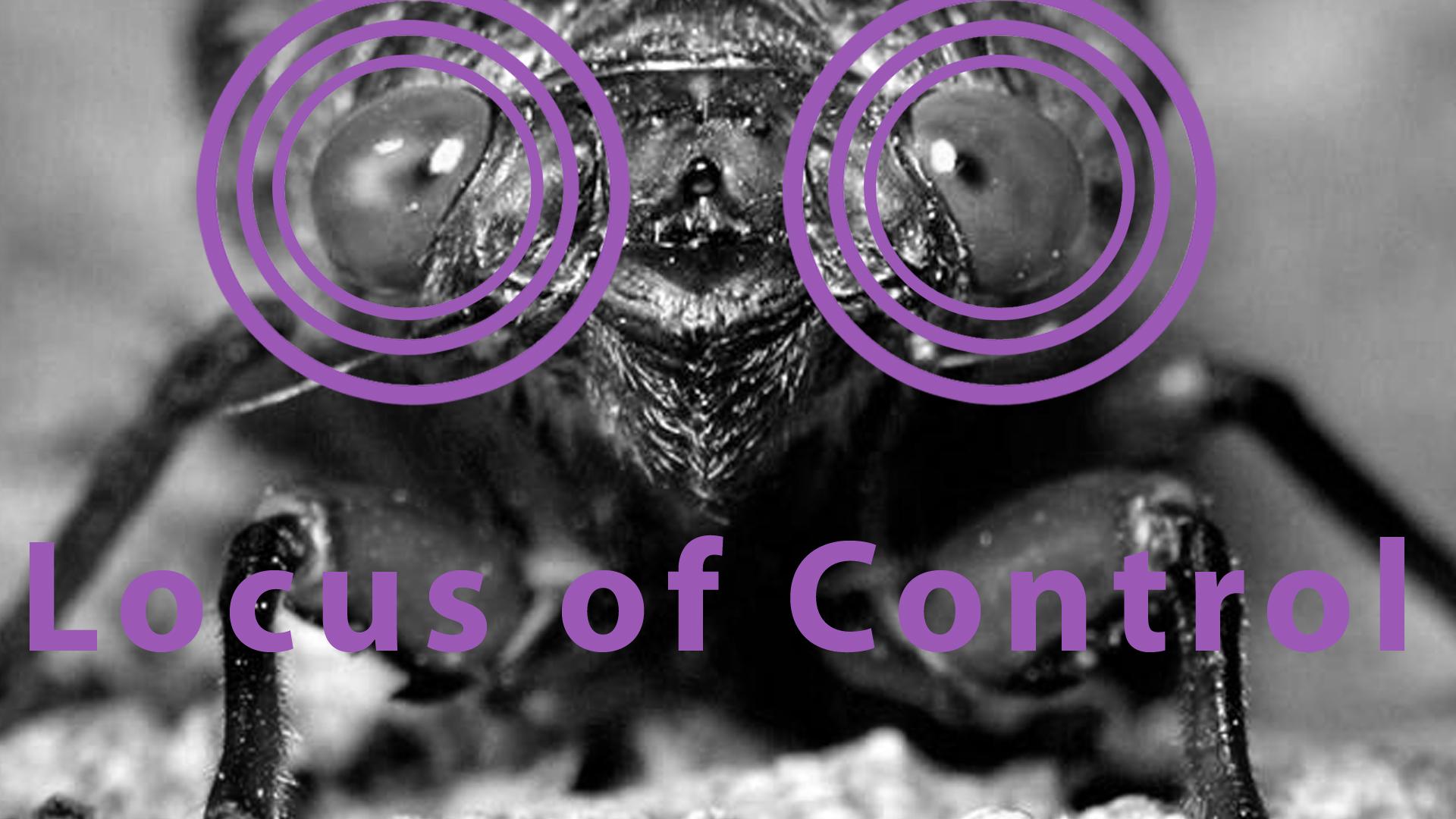 Rotter (1966) - Locus of Control