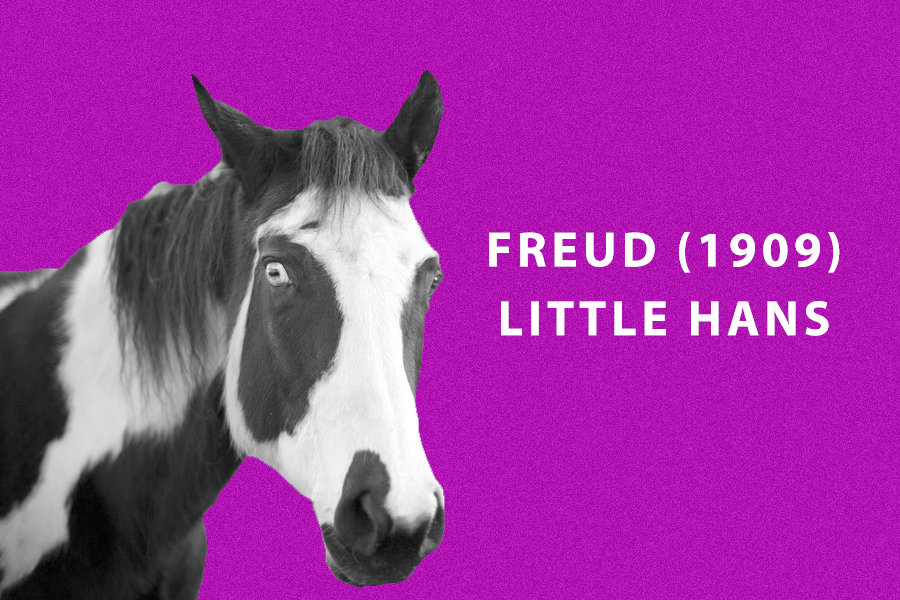 Freud (1909) - Little Hans